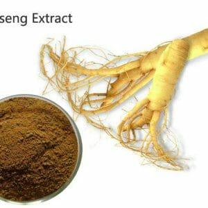 Ginseng Extract Powder