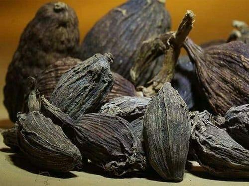 Cardamom (Big) Oleoresin