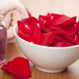 Rose Floral Absolute Oil
