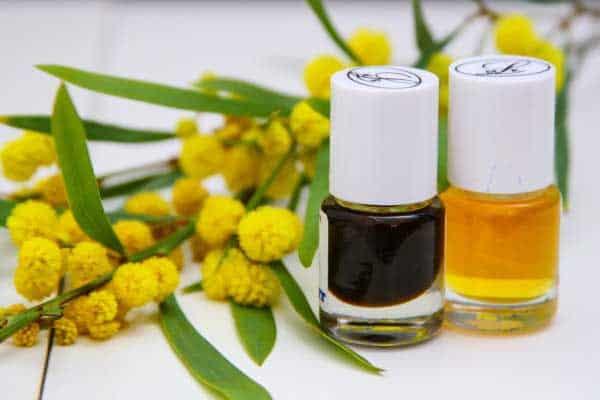 Cassie Flower Absolute Oil